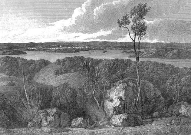 Flinders view of Port Jackson
